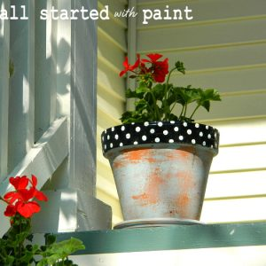 seeing spots … and polka dots