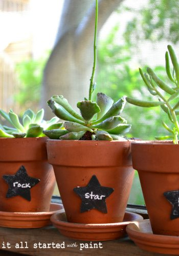 chalkboard-painted-plant-tags