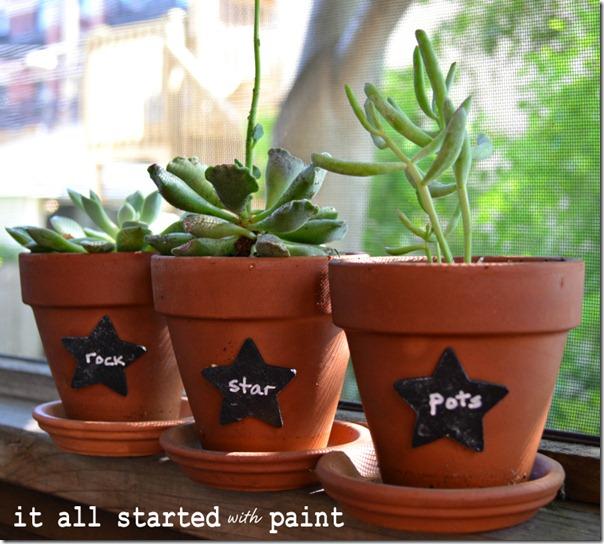chalkboard-paint-plant-markers