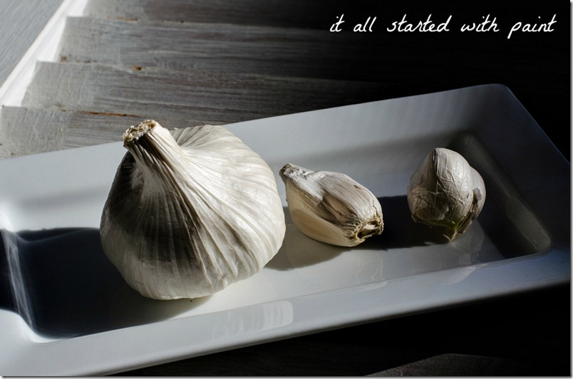 Garlic Clove 2