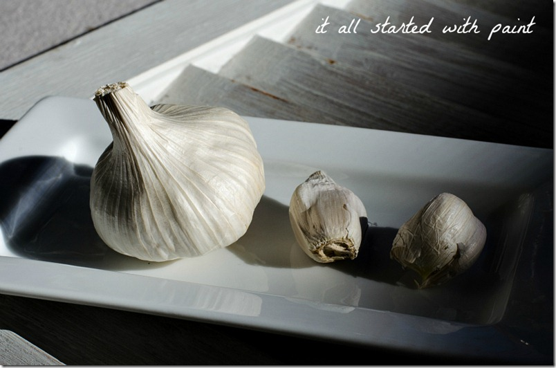 Garlic Clove 4