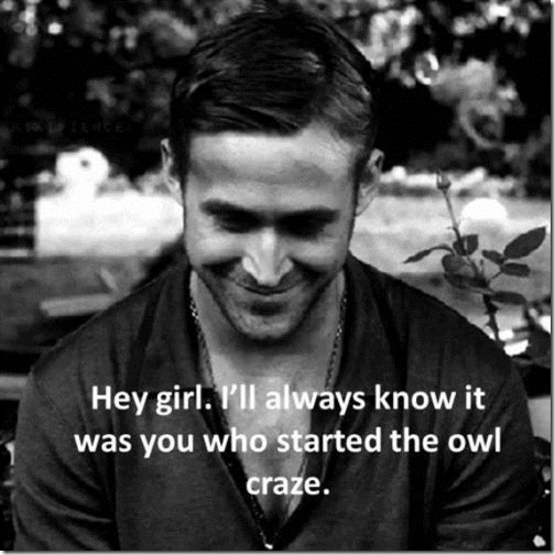 ryan_gosling_hey_girl_owls
