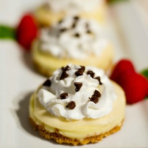 mason-jar-lid-mini-cheesecake