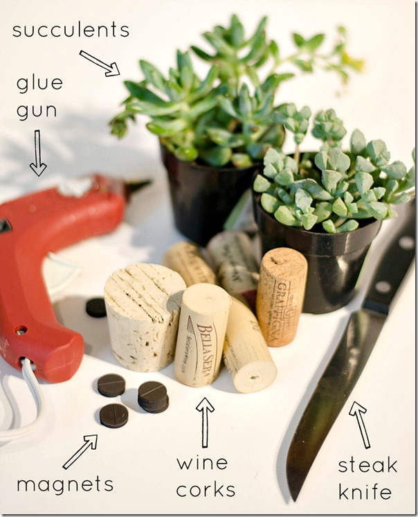 wine-cork-as-magnet-planter step 2