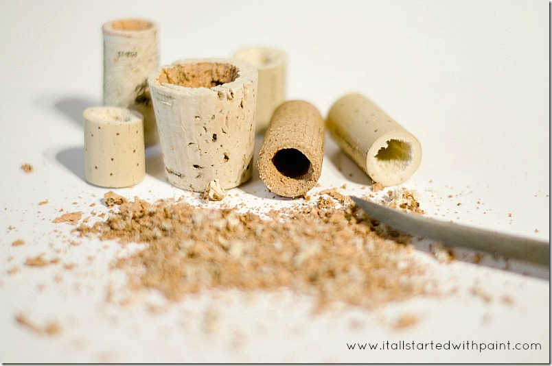 wine-cork-as-magnet-planter step 3