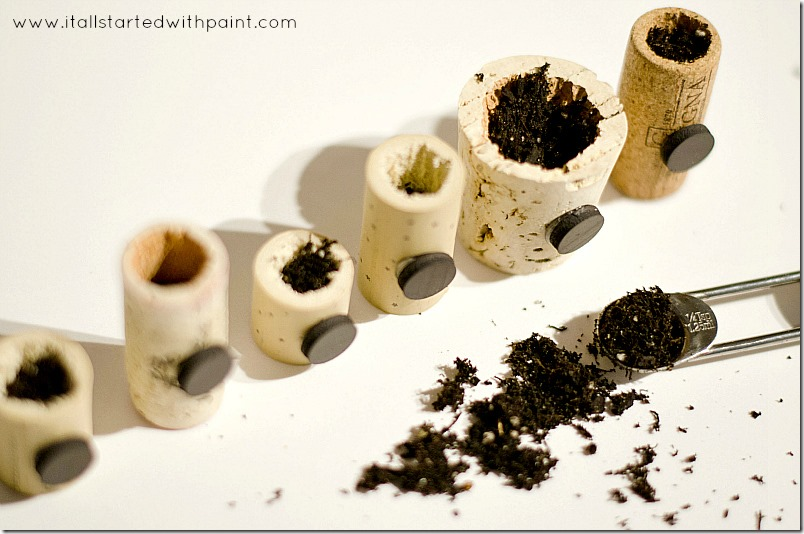wine-cork-as-magnet-planter step 5