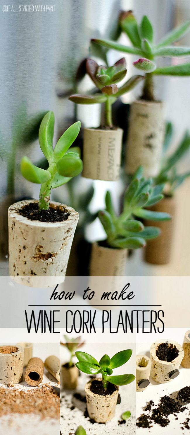Succulent Planter Ideas: Wine Cork Magnet Planters