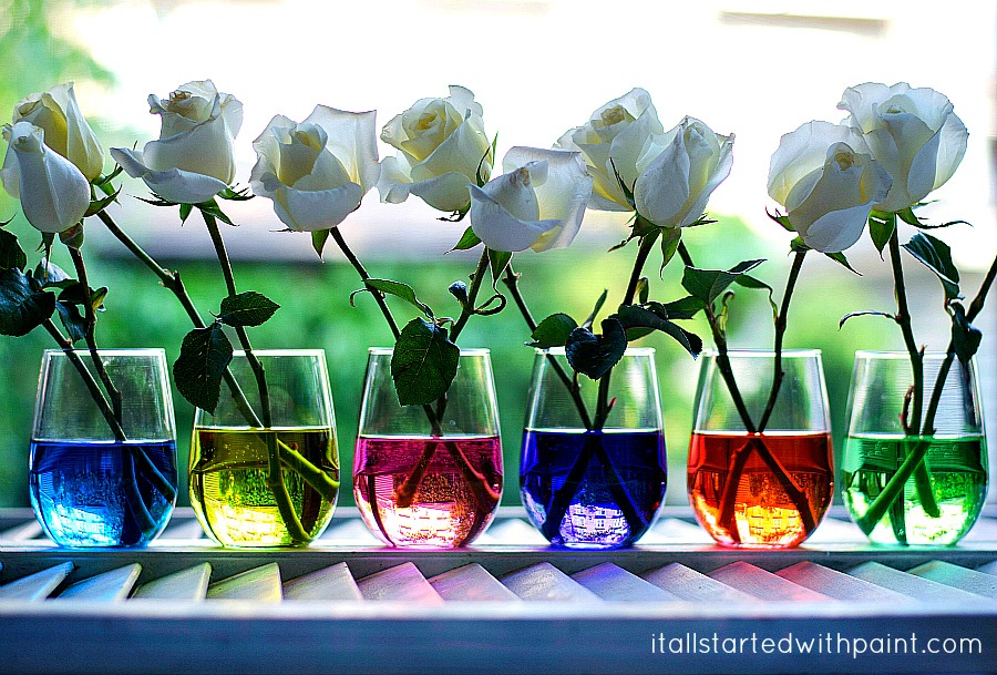 food-coloring-in-vase-water-more.jpg - It All Started With Paint