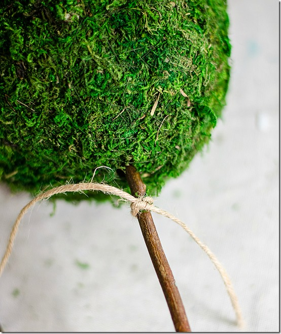 how-to-make-a-topiary-14