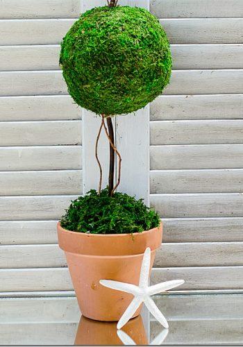 fake-topiary-moss-balls