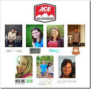 ace-blogger-panel-image