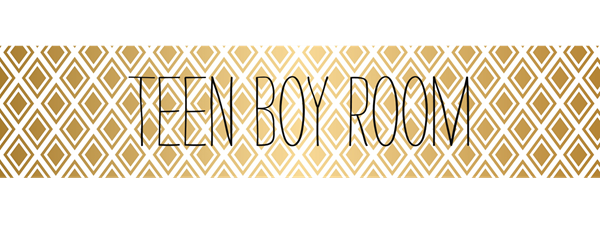 Teen Boy Room 2