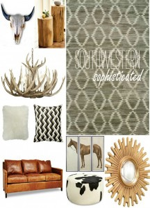 southwestern modern decor