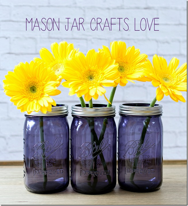 purple-mason-jars 2
