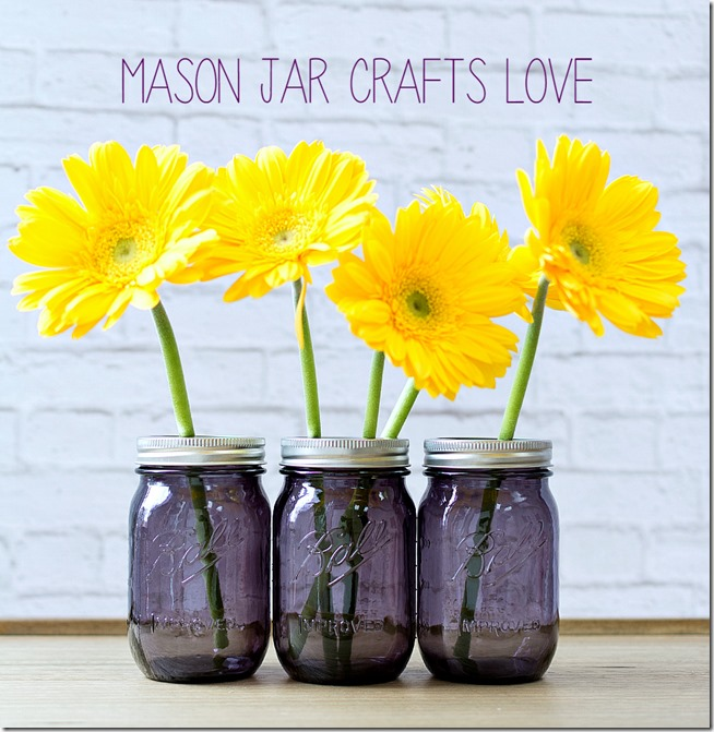 purple-mason-jars-7 2