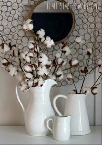 cotton stem arrangement
