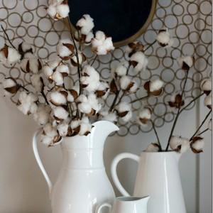 Cotton Stems … And I'm A Dork