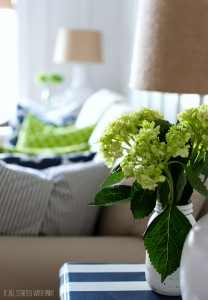 board-batten-living-room (2 of 27)