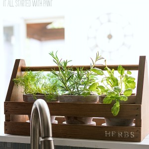 Tool Box Herb Planter