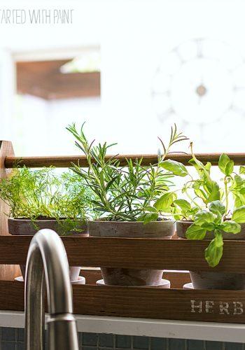 Tool Box Herb Planter