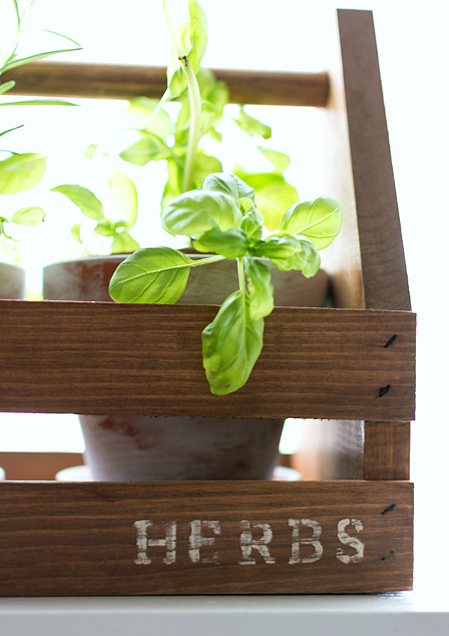 Rustic Tool Box Planter
