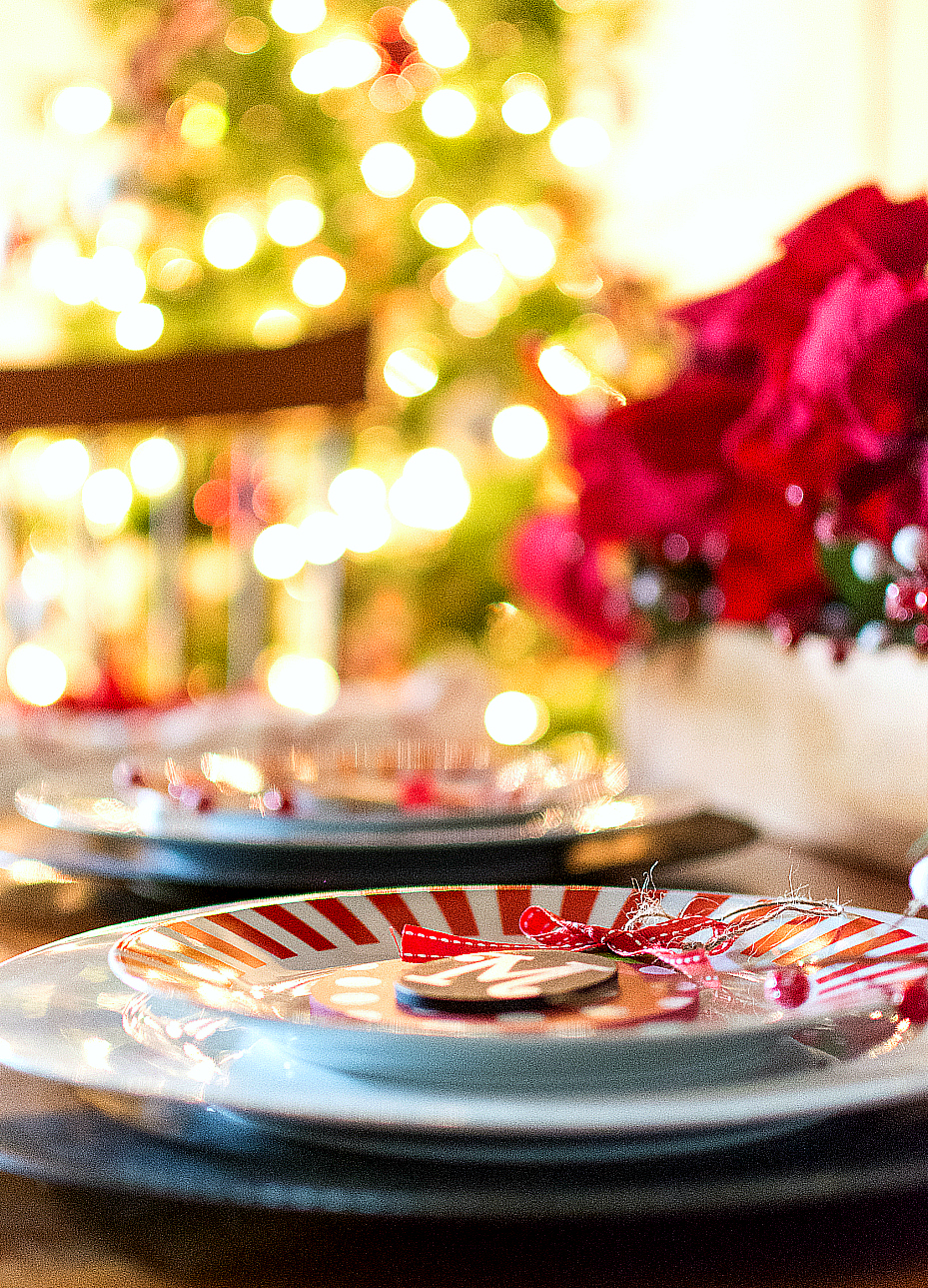 holiday-table-setting-ideas (23 of 28)