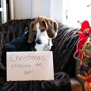 Merry Stress-Mas
