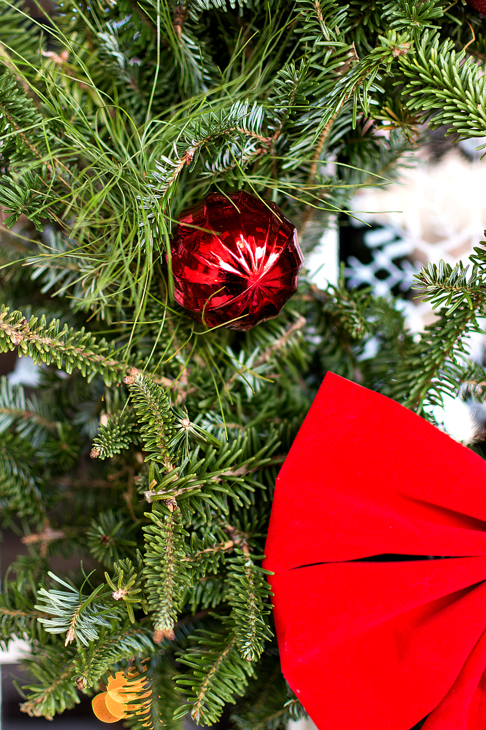 Outdoor-Christmas-Decor (11 of 31)