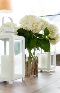 Driftwood Vase DIY & A $250 Gift Card Giveaway!