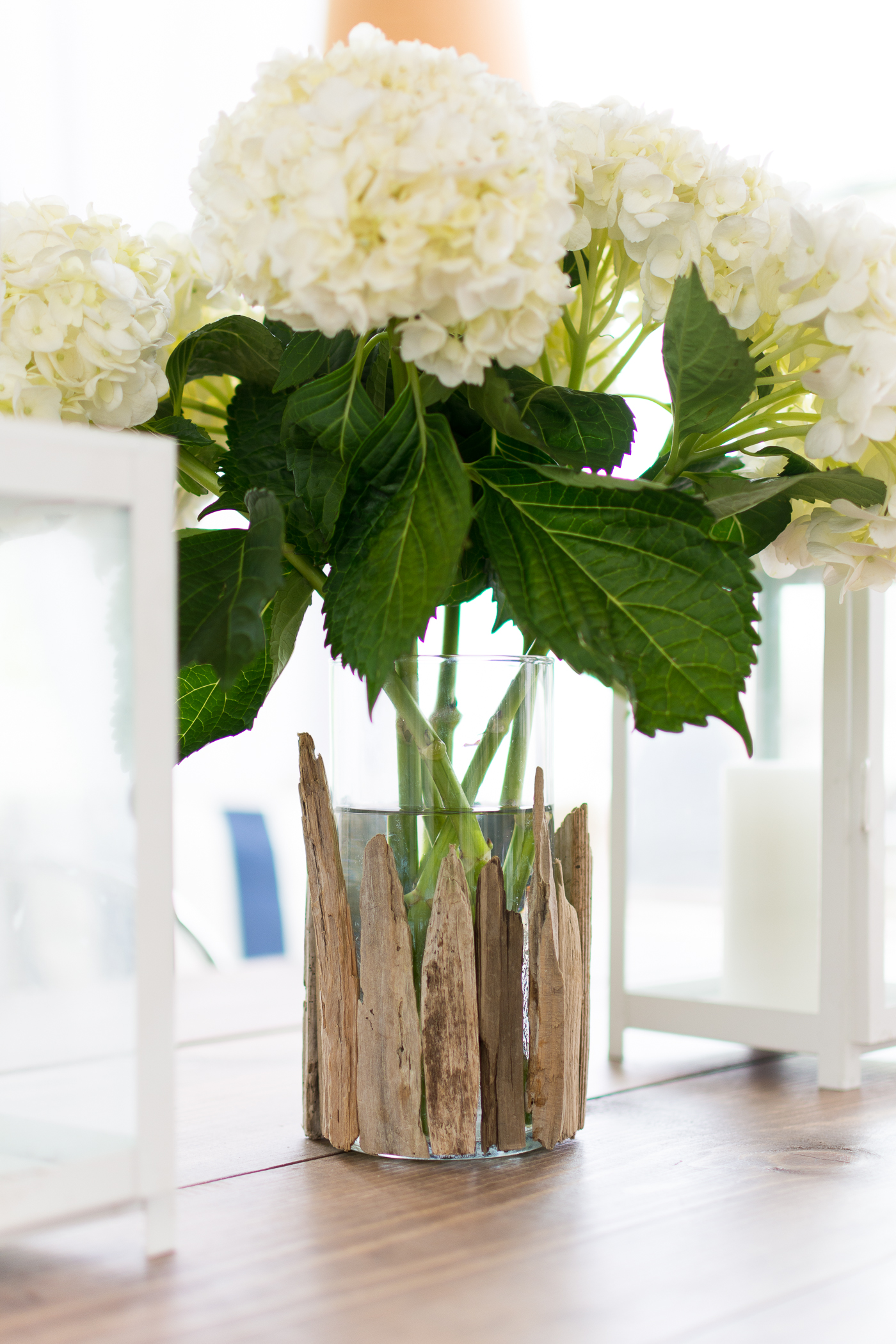 Beach Decor Ideas with Driftwood