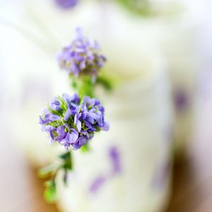 Lavender Flower Painted Mason Jar