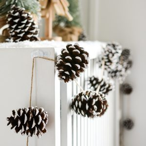painted-pine-cones-how-to-paint-itallstartedwithpaint-com-23
