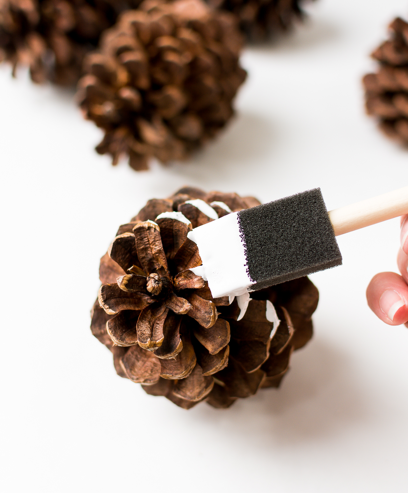 painted-pine-cones-how-to-paint-itallstartedwithpaint-com-3