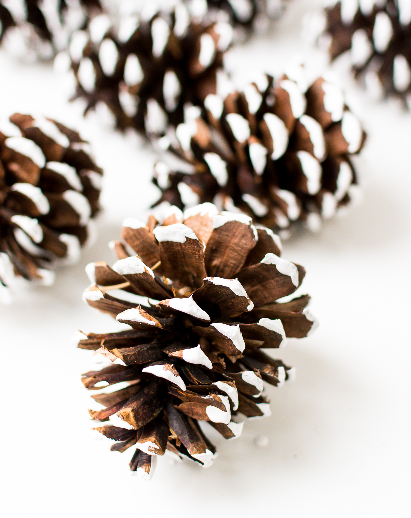 painted-pine-cones-how-to-paint-itallstartedwithpaint-com-6