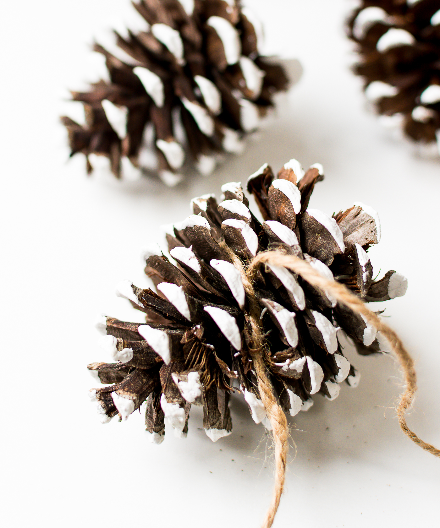 painted-pine-cones-how-to-paint-itallstartedwithpaint-com-7-1