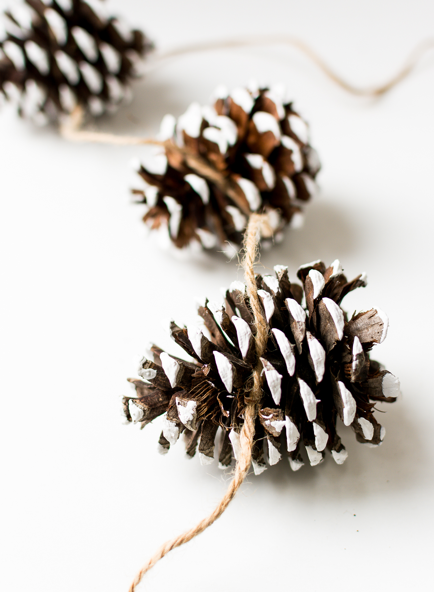 painted-pine-cones-how-to-paint-itallstartedwithpaint-com-9-1