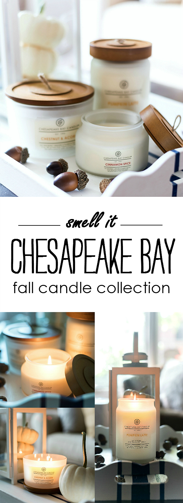 Fall Candle Collection from Chesapeake Bay Candle Heritage Collection - Pumpkin Candle, Cinnamon Candle, Vanilla Candle, Chestnut Candle, Christmas Candle