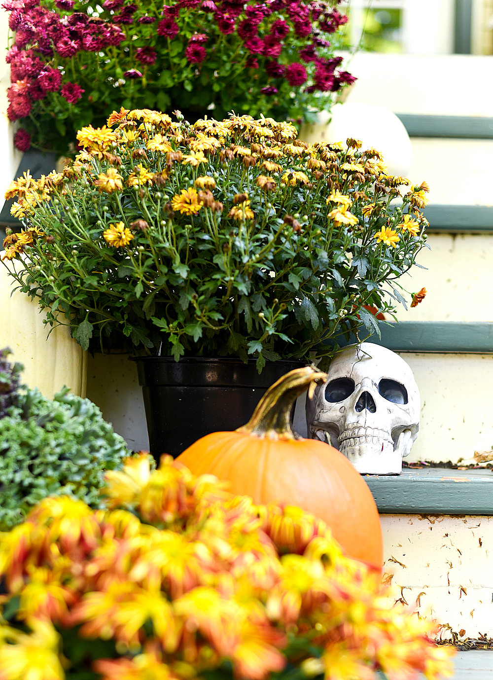 Fall Front Porch - Mums, Pumpkins, Skull