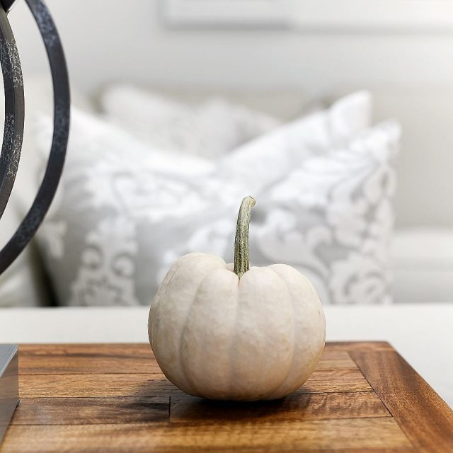 whitepumpkins falldecor