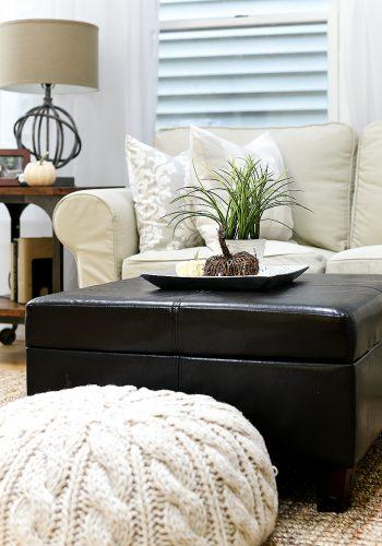 Neutral Gray, Greige Living Room