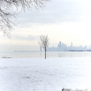 Chicago Lakefront in Winter @ Montrose Beach
