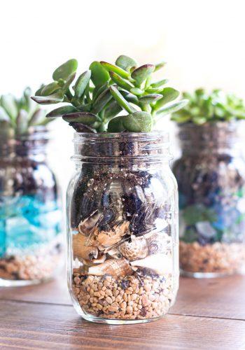 Succulent & Seashell Mason Jar Planter